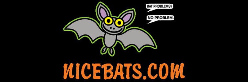Nicebats.com